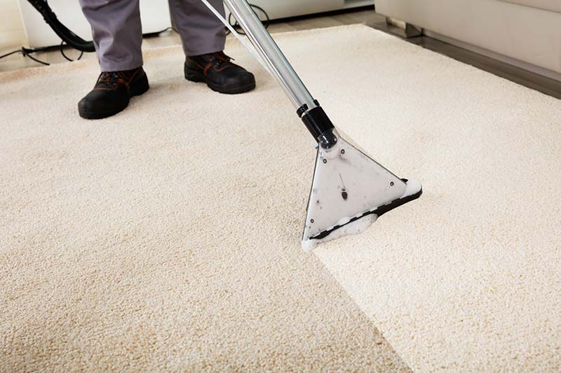 Pro 1 Solutions Carpet Cleaning
