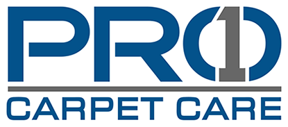 Pro 1 Carpet Care Solutions